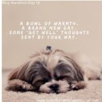 A bowl of warmthA brand new daysome 'get well' thoughtssent by your way.